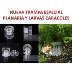 Trampa natural especial Planaria crias caracol pecera caracoles acuario gambario