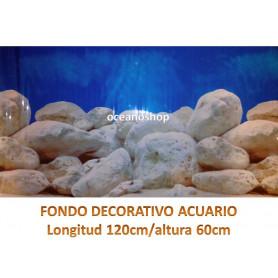 Fondo decorativo ciclidos africa 120x60cm