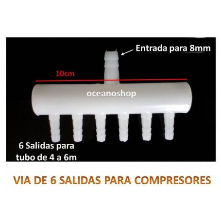 VIA 6 SALIDAS tubo 4mm