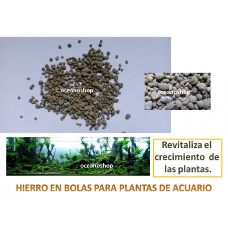 Abono HIERRO para plantas 80gr
