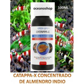 Catappa-x Concentrado de hojas de almendro indio