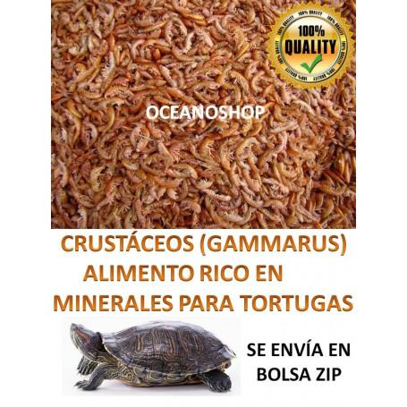 Gammarus 250ml comida para tortugas
