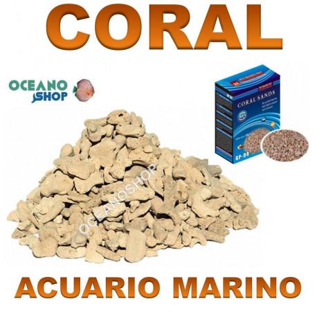 coral sands gp 04 sunsun grava coral marino acuario