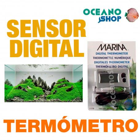 TERMOMETRO CON SENSOR DIGITAL MARINA