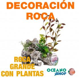 Ornamento Deco Rock con Plantas MARINA - Grande