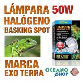 lámpara-reptiles-halógeno-basking-spot-50w-exo-terra