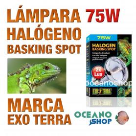 lámpara-reptiles-halógeno-basking-spot-75w-exo-terra