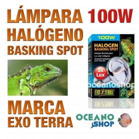 lámpara-reptiles-halógeno-basking-spot-100w-exo-terra