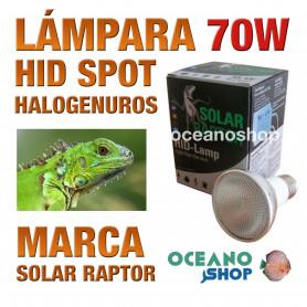 lámpara-reptiles-hid-spot-halogenuros-70w-solar-raptor