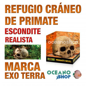 refugio-para-reptiles-primate-skull-cráneo-de-primate-exo-terra