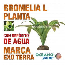 planta-bromelia-l-para-puesta-de-huevos-de-ranas-gde-con-depósito-agua-exo-terra