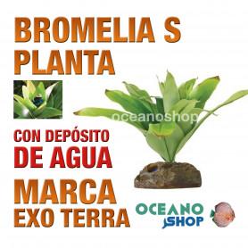 planta-bromelia-s-para-puesta-de-huevos-de-ranas-peq-con-depósito-agua-exo-terra