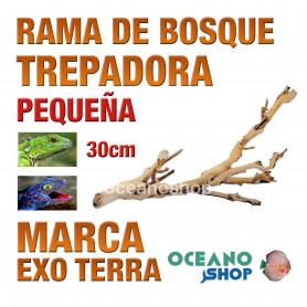 rama-de-bosque-forest-branch-trepadora-para-reptiles-y-anfibios-pequeña-exo-terra