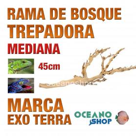 rama-de-bosque-forest-branch-trepadora-para-reptiles-y-anfibios-mediana-exo-terra
