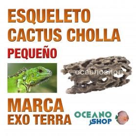 réplica-de-esqueleto-de-cactus-cholla-decoración-de-terrarios-pequeña-exo-terra