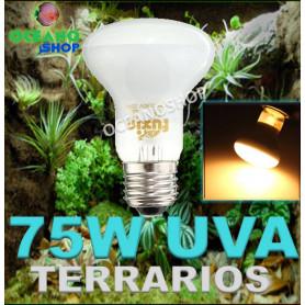 Bombilla 75w UVA para reptiles anfibio tortuga reptil rana terrarios o incubadoras