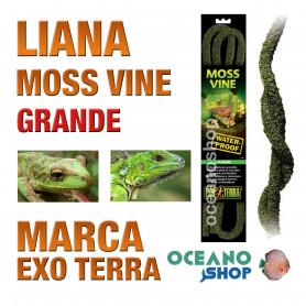 liana-flexible-impremeable-musgo-para-anfibios-arbícolas-grande-exo-terra