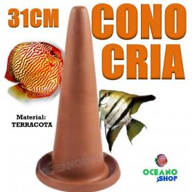 cono cria discos escalares desove reproducción alevines acuario 31cm