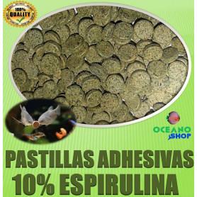 pastillas adhesivas cristal acuario comida espirulina peces vegetarianos ciclidos fondo herviboros alimento gambas