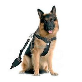 Arnés para perros con cinturón de seguridad arquivet