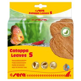 Sera Catappa Leaves S 14cm 10 hojas