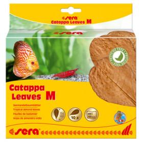 Sera Catappa Leaves m 18cm 10 hojas