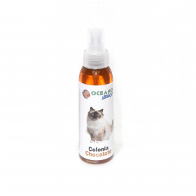 Colonia Chocolate Gatos 100 ml. Oceanoshop