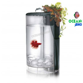 Ocean Free Kit Betta Flora Led 2L BLANCO