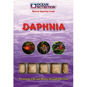 Daphnia ocean nutrition