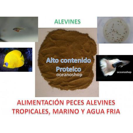 Comida Micro Alimento Cria para Alevines Peces Tropicales marino y agua fria