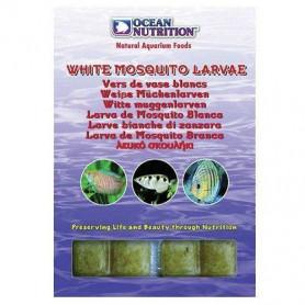 larva mosquito blanca ocean nutrition