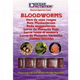 Larva mosquito roja ocean nutrition