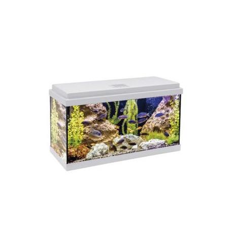 Kit aqualed 60 con filtro interior (60 l) blanco