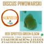 SORTEO DISCO PIWOWARSKI RED SPOTTED GREEN