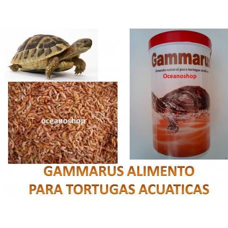Gammarus  1000ml comida para tortugas