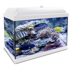 Aqua LED Pro HYDRA 25 blanco