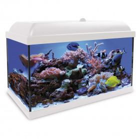 Aqua LED Pro HYDRA 45