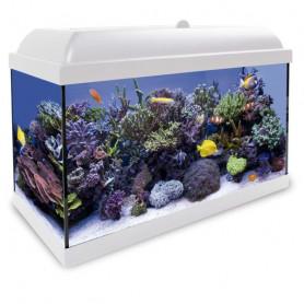 Aqua LED Pro HYDRA 80