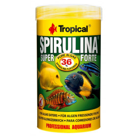 Tropical Super Spirulina Forte 36% 250 ml