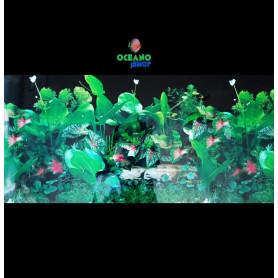 Fondo decorativo 80x60cm D717 pecera acuario