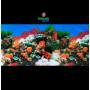 Fondo decorativo 80x60cm D716 pecera acuario