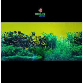 Fondo decorativo 80x40cm d721 acuario pecera