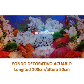 Fondo decorativo 100x50cm
