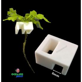 Clip hidroponia poto 8mm acuario cultivo plantas cristal