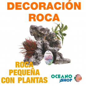 Ornamento Deco Rock con Plantas MARINA - Pequeño