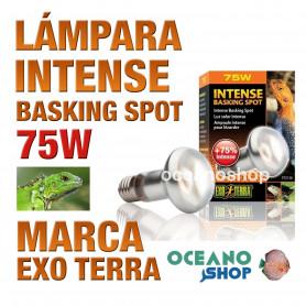 lámpara-reptiles-intense-basking-spot-75w-exo-terra