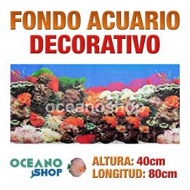 Fondo 80x40cm acuario decorativo vinilo fondo coral marino peces calidad
