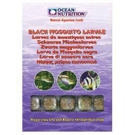 Larva mosquito negra ocean nutrition