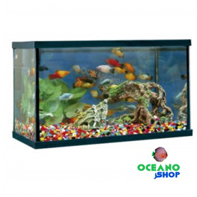 Kit Acuario happy pez 14 litros