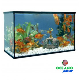 Kit Acuario happy pez 20 litros